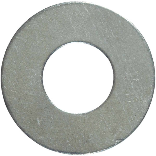 Hillman #10 Stainless Steel Flat Washer (100 Ct.)